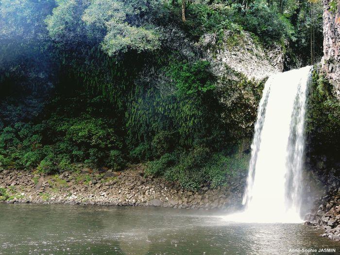 Gotoreunion Iledelareunion Réunionisland Waterfall Cascade Foret Forest Nature Beauty In Nature Water Photography Photosplaisirs