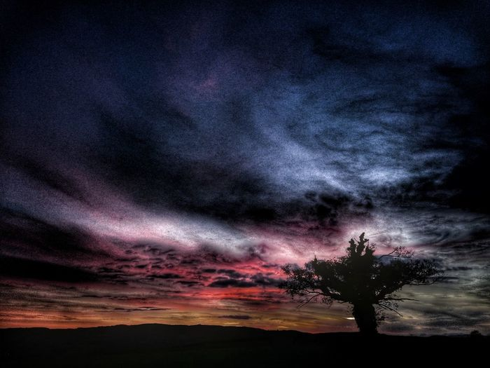 Silhouette trees on landscape against dramatic sky at sunset