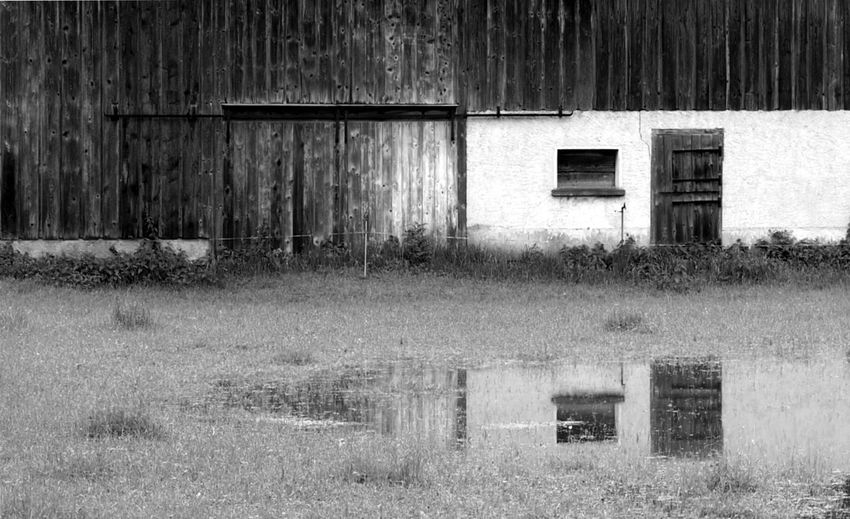 After the rain Abstract Barn Blackandwhite Built Structure Deterioration Door Grass Hard Rain June 2016 Lines Puddle Puddle Reflections Rain Reflection Rural Scene Still Life Wooden Texture