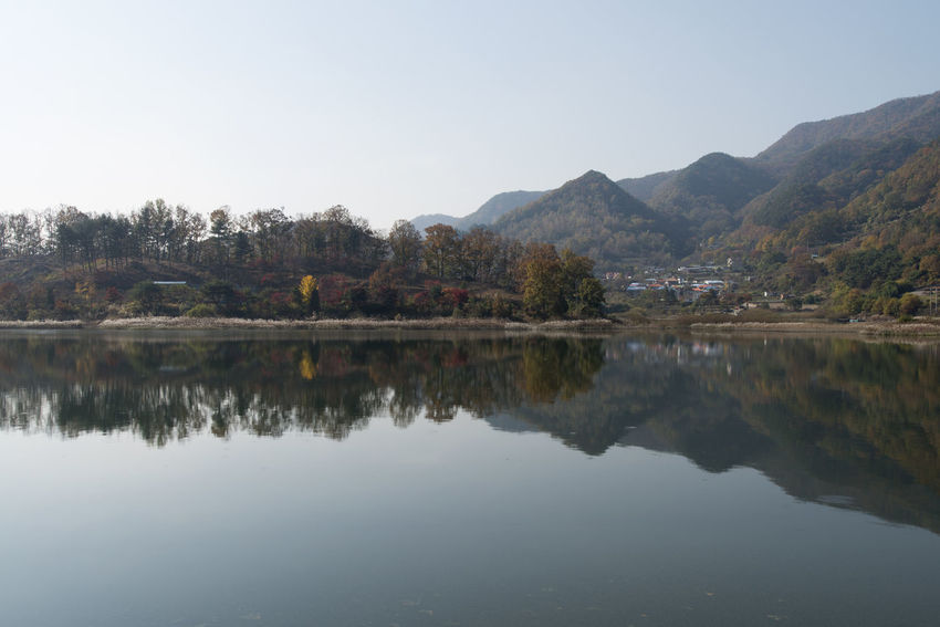 autumn landscape of Busodamak, a beautiful lake located in Okcheon, Chungbuk, South Korea Autumn Busodamak Okcheon Autumn Lake Beauty In Nature Clear Sky Day Lake Lake In Autumn Lake In The Morning Morning Lake Mountain Mountain Range Nature No People Outdoors Reflection Scenics Sky Tranquil Scene Tranquility Tree Water Waterfront