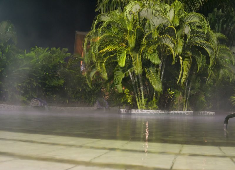 Spa with tropical plants - La Fortuna, Alajuela province, Costa Rica Alajuela Costa Rica Empty Nature Night No People Outdoors Palm Tree Palm Tree Palm Trees Pool Poolside Reflection Relaxation Spa Swimming Pool Swimming Pool At Night Tourism Tourist Resort Tree Tropical Tropical Climate Tropical Plants Vacations Water