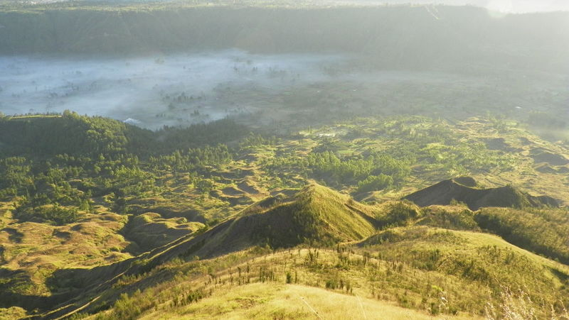 Volcanic landscape and tropical vegetation in morning light, Indonesia Aerial View Beauty In Nature Clouds Craters Day EyEmNewHere Fog Geology Green Color Landscape Lush - Description Morning Light Mountain Nature No People Outdoors Scenics Sky Tranquil Scene Tranquility Tree Vegetation Volcanic  Volcanic Landscape Wilderness