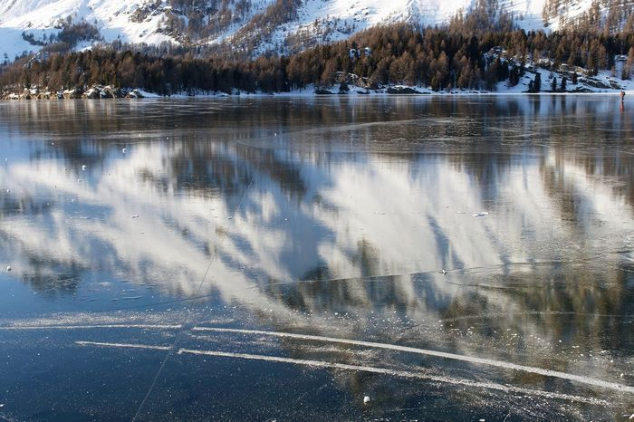 Beauty In Nature Cold Temperature Day Frozen Lake Nature No People Outdoors Reflection Scenics Snow Tranquil Scene Tranquility Tree Water Winter