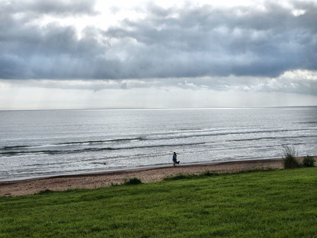 Animal Themes Beach Beach Day Beauty In Nature Berwick Berwick-upon-tweed Bird Cloud - Sky Coast Coastline Day Full Length Grass Horizon Over Water Nature Northumberland One Person Outdoors People Scenics Sea Sky Tranquil Scene Tranquility Water