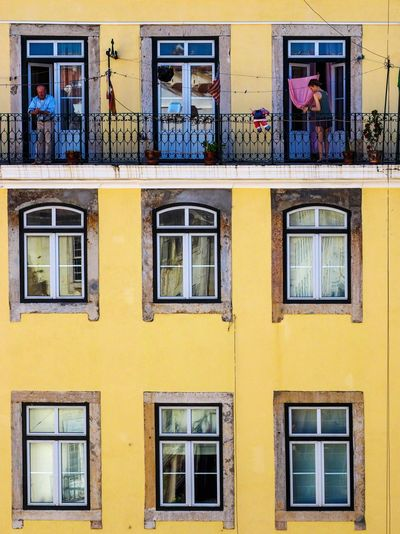 Window Building Exterior Yellow Architecture Built Structure Outdoors Residential Building Day No People City Lisbon Lisboa Portugal Olympus Mirrorless Candid Streetphotography Framed The Architect - 2017 EyeEm Awards