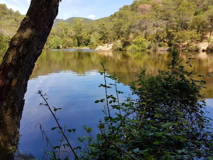 Paisaje natural. Beauty In Nature Reflection Water Nature Lifestyles Adventure Nature Beauty In Nature Plants And Flowers Paisaje Natural Naturelovers Nature_collection