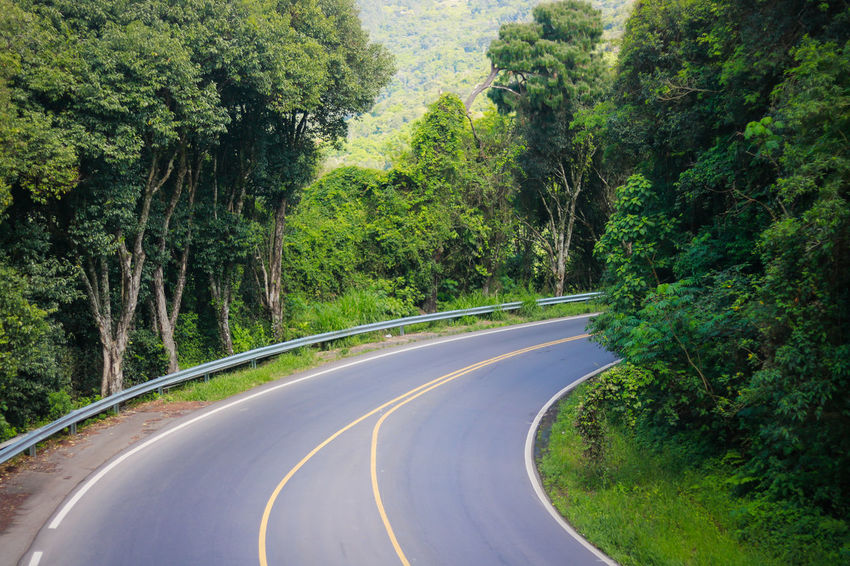 Beauty In Nature Curve Day Empty Green Color Growth Landscape Nature No People Outdoors Road Scenics Sky The Way Forward Tranquil Scene Tranquility Transportation Tree White Line Winding Road