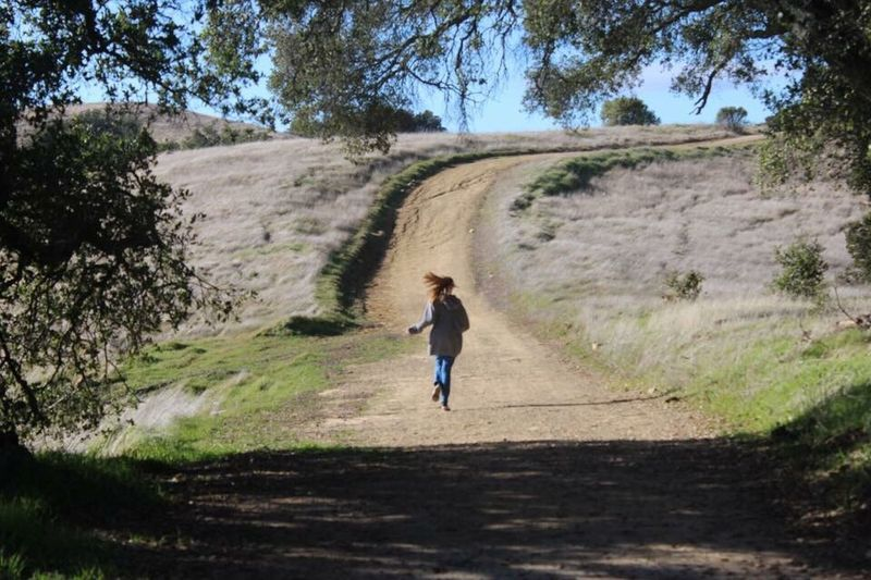 Mt Diablo CA Full Length One Person One Girl Only Tree Childhood Day Real People Carefree Running People Landscape Nature