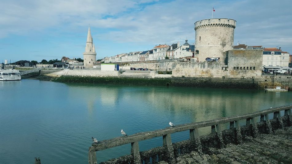 La Rochelle Dove La Rochelle Port La Rochelle, France City Water Politics And Government Reflection Sky Architecture Building Exterior Built Structure Boat Tower My Best Travel Photo