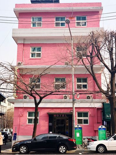 Pink colored motel Motel Building Exterior Architecture Transportation Built Structure Outdoors Land Vehicle Mode Of Transport Pink Color Day Bare Tree City