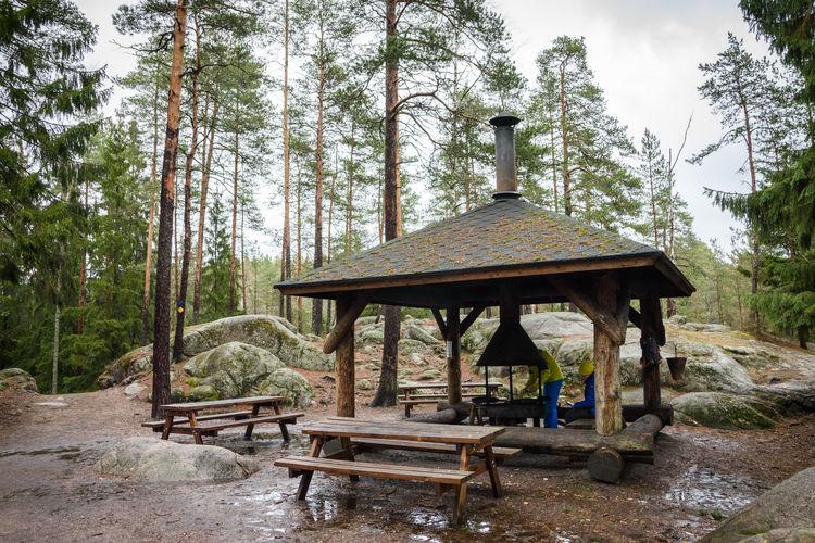 Gazebo in forest