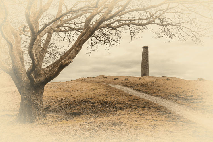 Industrial archaeology Chimney Vignette Bare Tree Beauty In Nature Branch Day History Industrial Archeology Landscape Landscape_photography Nature No People Outdoors Scenics Sky Tranquil Scene Tranquility Tree