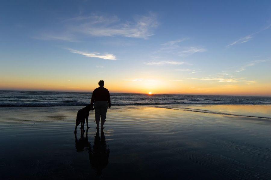 Best Friends ❤ Sunset Pet Portraits Ocean Lost In The Landscape Lost In The Landscape