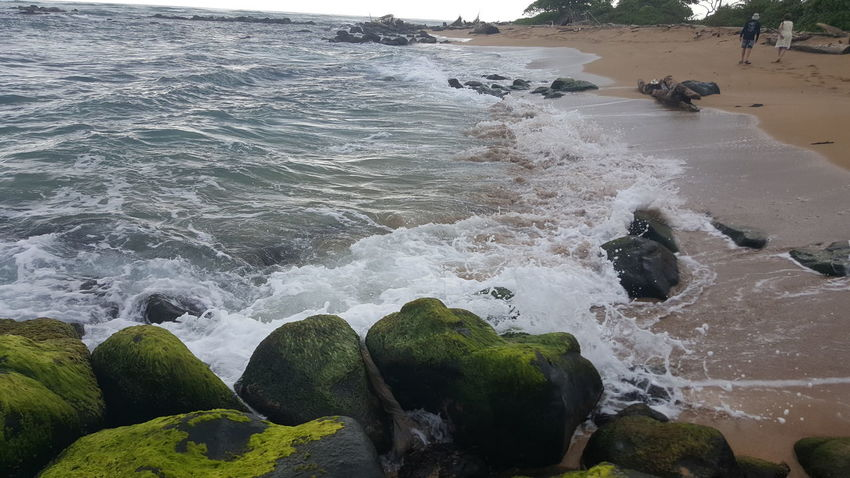 Water Outdoors Beauty In Nature Motion No People Seaweed Covered Rock Splashing Lydgate Beach Kauai Life Beach Life Sand Beach Photogrqphy Shorelines Scenics Serenity And Nature