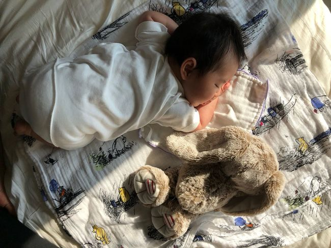 Morning Light Morning Childhood High Angle View Bed Indoors  One Person Real People Lifestyles Playing Stuffed Toy Day Teddy Bear Bedroom Babies Only