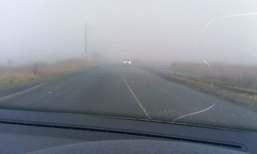 Good Morning! Misty Morning Danger! Take Care, Drive Responsible Careful Taking Pics While Driving Hazardous Hazardous Road Conditions Meinautomoment Meinautomoment Feel The Journey On The Way The Journey Is The Destination