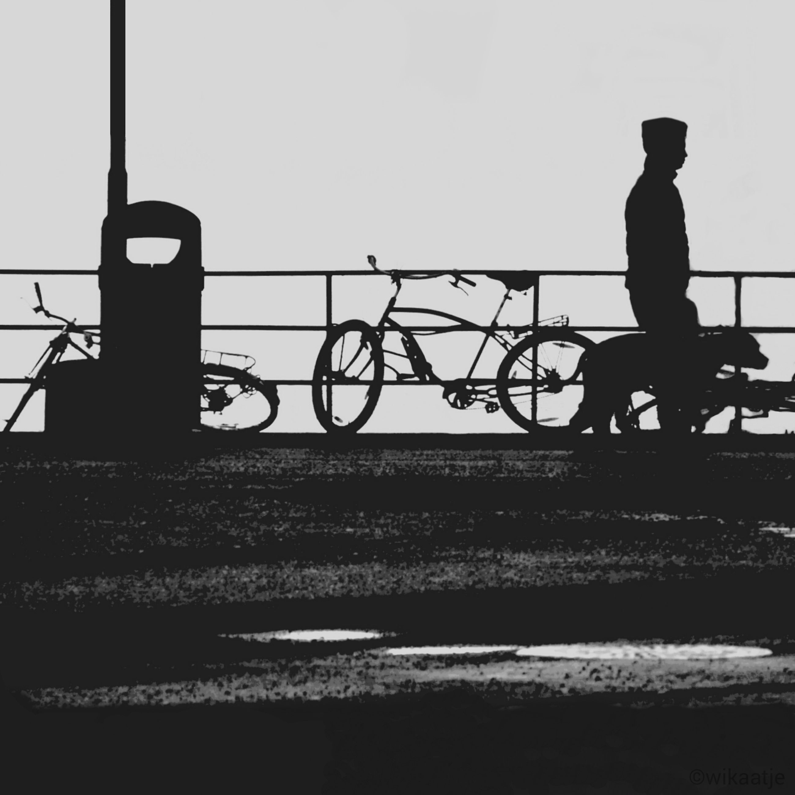 silhouette, men, lifestyles, bicycle, transportation, full length, leisure activity, clear sky, railing, side view, mode of transport, standing, rear view, cycling, sky, walking, riding