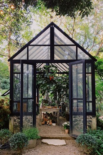Chiangmai PhonePhotography Glasshouse Architecture Plant Built Structure Nature Tree Day No People