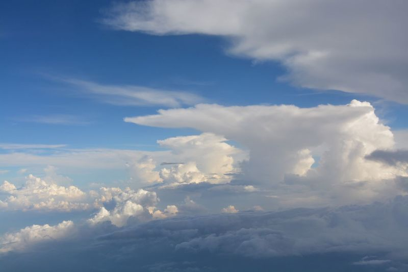 mushrooms Cloud