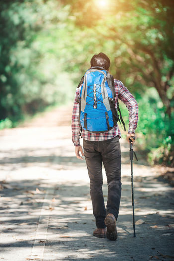 Rear View Of Male Hiker Walking On Road In Forest