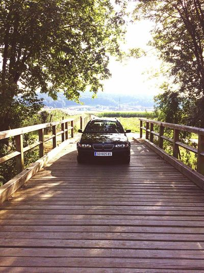 E46 Bmw Tree The Way Forward Day Wood - Material Outdoors Nature