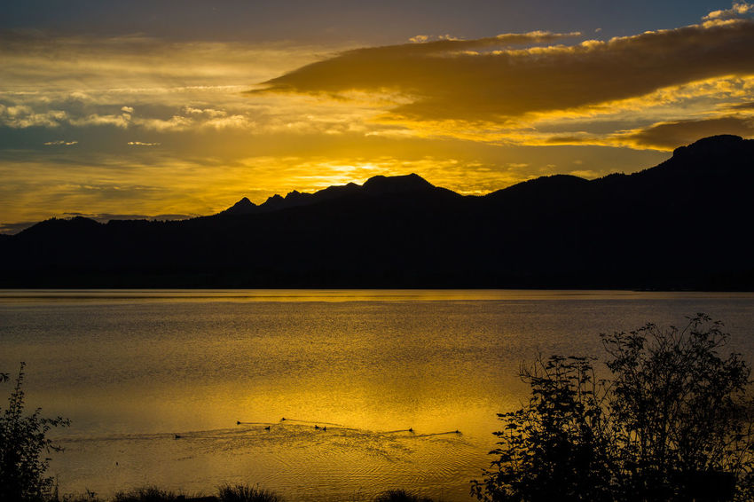 Bavaria Beauty In Nature Cloud - Sky Dramatic Sky Forggensee Holiday No People Outdoors Rieden Am Forggensee Romantic See Silhouette Sonnenaufgang Sunset Sunset Silhouettes Tourism Urlaub