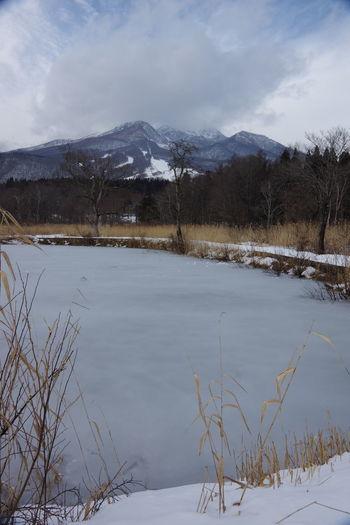 いもり池湿原 いもり池 新潟県