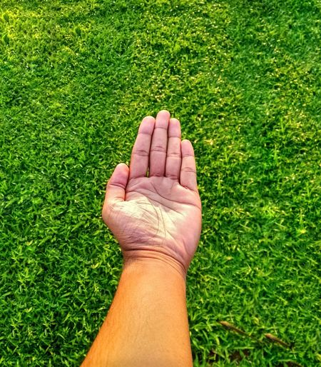 Midsection of person hand on grass