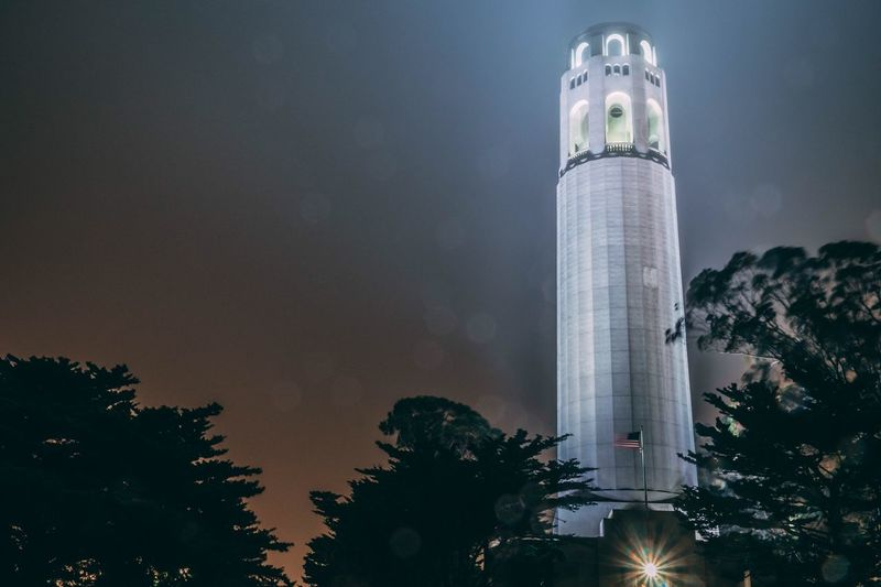 Coit Tower Sanfrancisco EyeEmNewHere EyeEm Selects Sky Architecture Low Angle View Night Tree Plant Built Structure Building Exterior Illuminated Tall - High Travel Destinations Tower