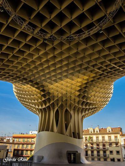 Sevilla SPAIN España🇪🇸 Manu Manu García Setas Sevilla