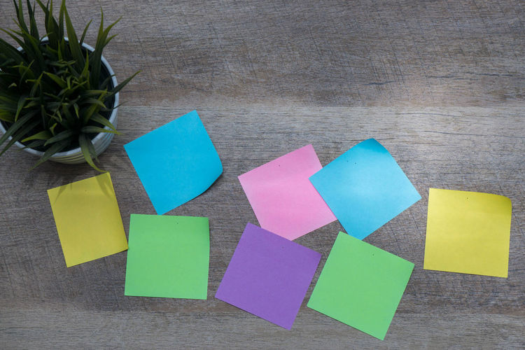 High angle view of colorful blank adhesive notes with plant on wooden table