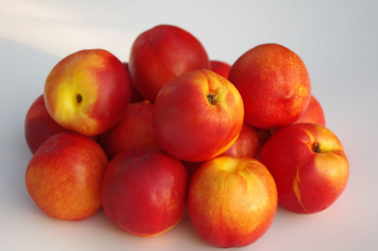 California Crop Day Food Food And Drink Freshness Fruit Healthy Eating Nectarine Nectarines No People Orange Color Outdoors Produce Red Studio Shot White Background Delicious Delicious Fruit Premium Collection EyeEm Premium Collection California Agriculture