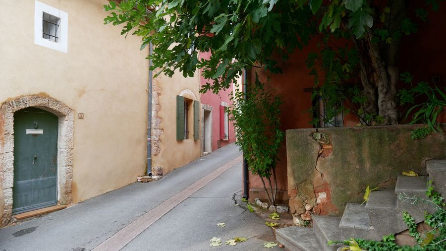 TOWNSCAPE Cityscape Old Town Ocher Ocher Color Façade Architecture Architecture_collection Door Colors Colorful Colorful Houses Built Structure Building Exterior Building No People Day Outdoors Alley Plant House Residential District Tree Nature City Direction Footpath Street Window Wall Wall - Building Feature The Way Forward
