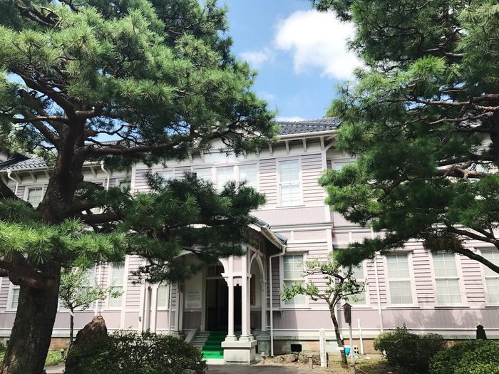 Architecture Building Exterior Built Structure Tree Sky Green Color History House Day Travel Japanese Style Streetphotography Japan Photography Travel Photography