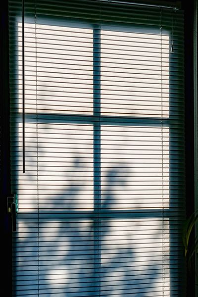 Fenster Tür Hitzewelle Sonnenschutz Architecture Blinds Building Building Exterior Built Structure Closed Day Focus On Shadow Garage Glass - Material Jalousie Window Metal No People Outdoors Pattern Protection Safety Security Shadow Shutter Sunlight Transparent Window