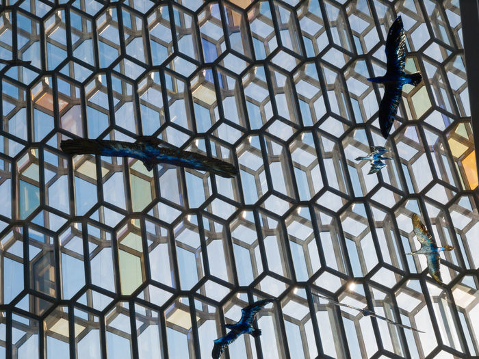 Harpa is a concert hall and conference centre in Reykjavík, Iceland. The opening concert was held on May 4, 2011. The building features a distinctive colored glass facade inspired by the basalt landscape of IcelandHarpa was designed by the Danish firm Henning Larsen Architects in co-operation with Danish-Icelandic artist Olafur Eliasson. The structure consists of a steel framework clad with geometric shaped glass panels of different colours. The building was originally part of a redevelopment of the Austurhöfn area dubbed World Trade Center Reykjavík, which was partially abandoned when the financial crisis took hold. Concert Hall  Distinctive Harpa Iceland Reykjavik Tourism Tourism Destination Travel Travel Destinations Vivid International
