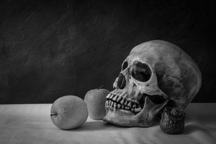 Still life with skull man with apples on a white floor. Apple Halloween Anatomy Body Part Bone  Close-up Fear History Horror Human Body Part Human Bone Human Skeleton Human Skull Indoors  Skeleton Skull Spooky Still Life The Past