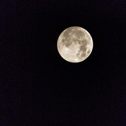 좀더 정확한 달사진 구름때문에 안보여서 구름지나 갈 때마다 찍었는데 그때 안흔들리게 찍느라 경직되서 어깨가 너무 아프다ㅠㅠ 아프다그램 고생했그램 달스타그램 슈퍼문