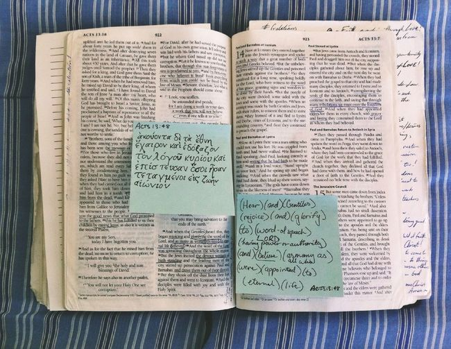 Bible Study Acts 13:48