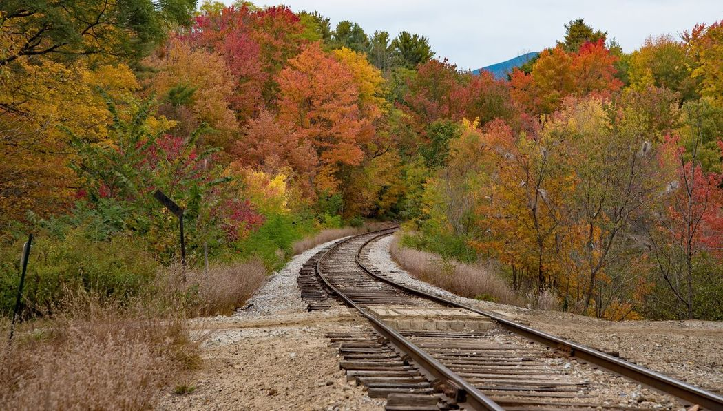 Autumn Fall Foliage Railroad Track Railroad Colors Season  New Hampshire Beauty In Nature Landscape_Collection Travel Transportation Landscape Countryside EyeEm Nature Lover Autumn TakeoverContrast Nature Nature_collection EyeEm Masterclass Leaves Nature Photography Railroad Track EyeEm Best Shots Tranquility
