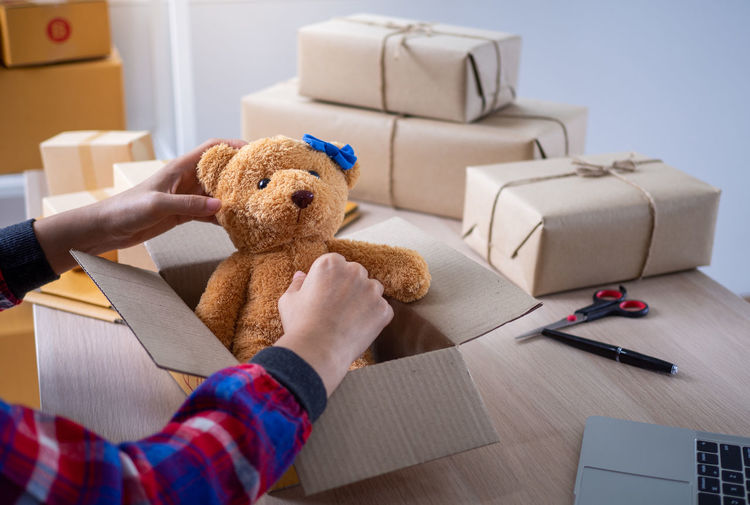 Close-up of hand holding stuffed toy in box