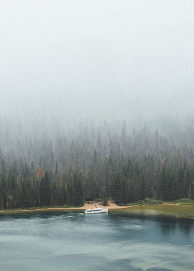 Calm lake with misty trees against the sky
