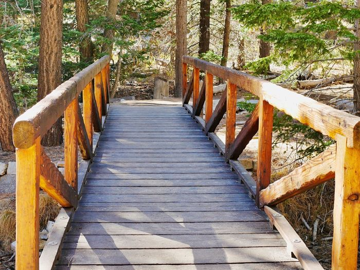 Railing The Way Forward Wood - Material Day Direction Nature Plant Bridge Architecture No People Tree Tranquility Built Structure Connection Footbridge Bridge - Man Made Structure Boardwalk Footpath Land Sunlight