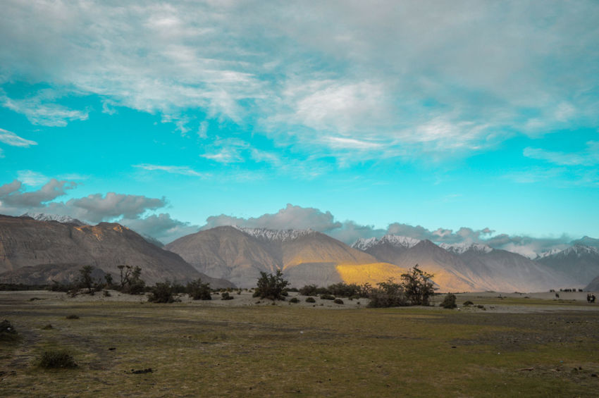Himalayas India Ladakh Beauty In Nature Blue Day Field Grass Landscape Mountain Mountain Range Nature No People Outdoors Scenics Sky Tranquil Scene Tranquility Tree