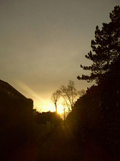 Ile Verte Juziers Sun