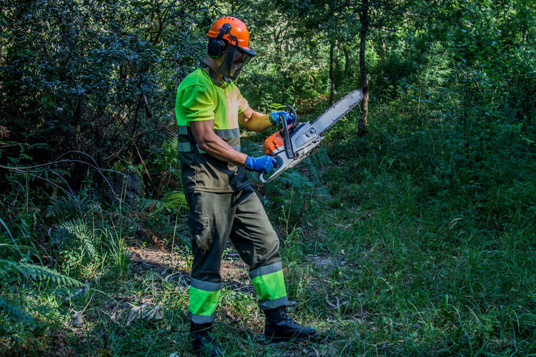 Forest worker working in the forest with chainsaw