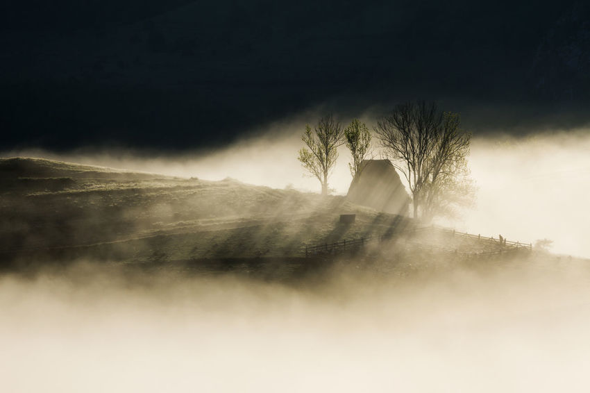 foggy morning in Apuseni Mountains Beauty In Nature Day Fog House Irrigation Equipment Long Exposure Mist Motion Nature No People Outdoors Power In Nature Shadows Sky Sunrise Tree Water Waterfall