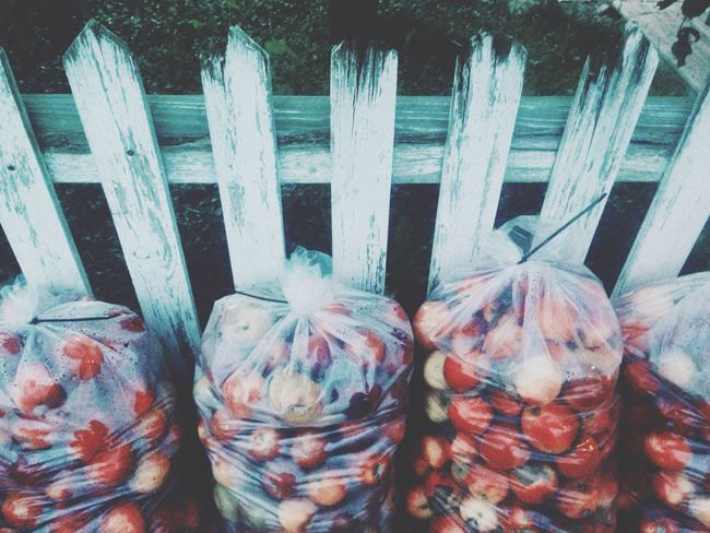 Symmetrical bagged apples against a white picket fence. Autumn Apple Farmtotable
