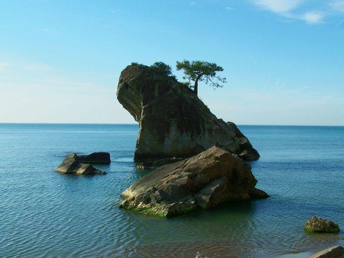Nature Beach Beachphotography Island Seaside Sea Beauty In Nature