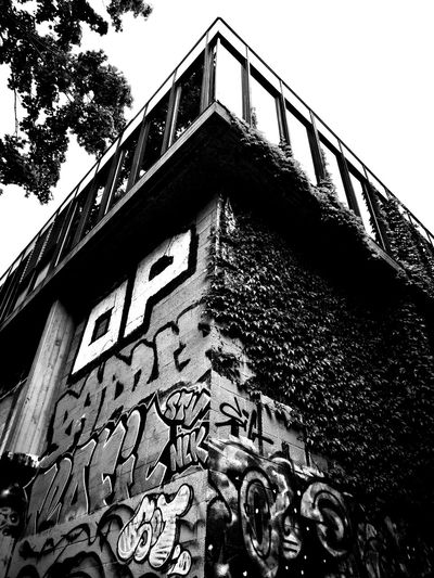 Façade Streetphotography Blackandwhite Blackandwhite Photography RICOH GR 2 Ricoh GR II Ricoh Gr2 Window Graffiti Art Grafitti Vigne Vierge Tree Sky Architecture Building Exterior Close-up Built Structure